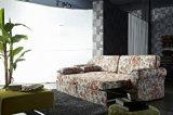 Pull-out кровать софы с шикарным изображением