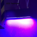 Intensité à l'irradiation par LED UV Solutions de traitement d'encre 395nm