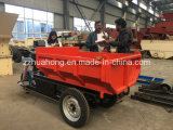 Электрический Dumper, миниый электрический трицикл для груза Carring, минируя трицикл, мотоцикл 3 колес, электрический корабль