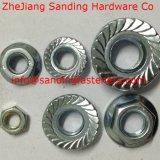 Zinc Carbon Steel Gr8 DIN6923 Jaune Plaqué Hex Nut Bride