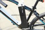 Vélo électrique de batterie de moteur de montagne avec le contrôleur de Lishui