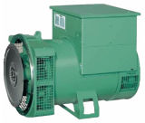 세트를 생성하는 작은 디젤 엔진 가스 발생 Disel에서 이용되는 무브러시 발전기