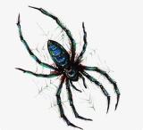 Tatuaje temporal impermeable del arte de las etiquetas engomadas del tatuaje de la araña de moda