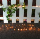 LED装飾のための銅ストリングライト6V 1A