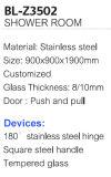 Doccia dell'acciaio inossidabile di figura del diamante della stanza da bagno di Frameless (BL-Z3502)