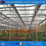 Venlo 유형 상업적인 수경법 유리 온실