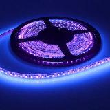 Decorazione alto CRI70 80 del partito 90 strisce del LED