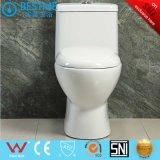 Toilette fermée de vente de la petite de salle de bains eau chaude de meubles