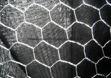 Горячее окунутое гальванизированное шестиугольное плетение провода