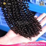 3PCS 4PCS 5PCSのロットの自由な出荷のブラジルの巻き毛の織り方は毛を束ねる