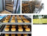 Beste Qualität 5-100 Meter passte Bäckerei-Dieseltunnel-Ofen an