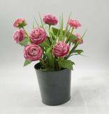 De Kleurrijke Ingemaakte Bloemen van de Decoratie van het huis
