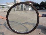 Parrilla de cristal doble de UPVC dentro del estándar fijo de la ventana As2047