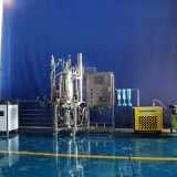 50 litri di fermentatore dell'acciaio inossidabile (sistema stirring magnetico alla parte inferiore)