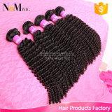 #1b 색깔에 의하여 보장되는 질 Malaysian 비꼬인 꼬부라진 Virgin 머리 (QB-MVRH-DW)