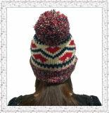 Chapéu feito malha Weave do Beanie com o velo dentro do chapéu do inverno para as meninas (1-3469)