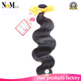 Clean Weft No Lice Darling Hair / Raw Human Hair (QB-MVRH-BW)