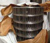 熱い浸された電流を通された溶接された金網のステンレス鋼の溶接された網