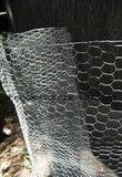 Sailin hetOndergedompelde Hexagonale Opleveren van het Kippegaas