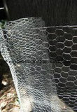 Sailin Caliente-Sumergió la tela metálica hexagonal de pollo