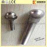 Botão do fornecedor Socket Head 304 Stainless Steel Bolts