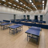 Tischtennis Kurbelgehäuse-Belüftung Sports heißen Verkauf der Bodenbelag-Oberflächen-2017