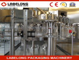 Machine de remplissage de pétrole de /Eidble de machines d'embouteillage d'huile d'arachide de Chaud-Vente