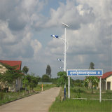 Heißes Selling Highquality Solar Power Street Light in 7m High