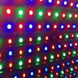Напольные HD ослепляют модули индикации СИД