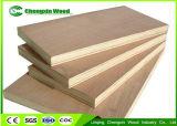 madera contrachapada del anuncio publicitario de la base de Combi de la cara de la madera dura de 18m m