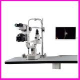눈 장비 중국 디지털 틈새 램프