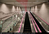 Im FreienFactory Price 1000mm Step 35 Degree Escalator