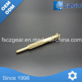 Hohes Precision Customized Brass Transmission Small Spline für Various Machinery