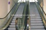 Escalera móvil usada Zy del pasajero de Shandong FUJI