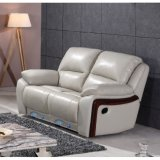 Stilvolles Recliner Sofa Electric Recliner Leather Sofa 6007m