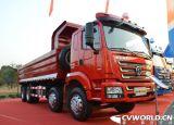 덤프 트럭 10wheel 420HP Shacman 덤프 팁 주는 사람