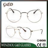 광학 디자인 프레임 Eyewear 새로운 안경알