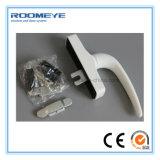 Roomeye modificó el exterior abierto del PVC de la ventana para requisitos particulares blanca del marco con el marco doble