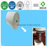 PET überzogenes Papier für Costa-Kaffee