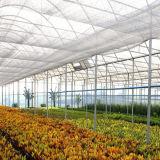 버섯 온실 다중 경간 온실 정원 온실