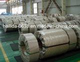 Bobine en acier laminée à froid, Tmbp pour le fer blanc SGCC SPCC, bobine de l'acier inoxydable DC01