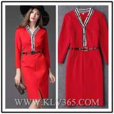 Form-Frauen-Dame-Sprung-Long-Sleeved Geschäfts-Kleid
