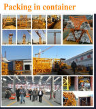 Grue à tour de Individu-Érection de construction de fournisseur de la Chine Qtz50 Tc4810-Max. Chargement : 4t/Boom 48m