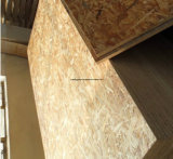 OSB für Exterior Use, Oriented Strand Board