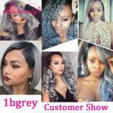 Ombre 색깔 사람의 모발 Malaysian Virgin 머리