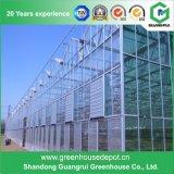 Van de Laag van de Prijs van de Fabriek van de Leverancier van China de Enige Serre van het PC- Blad