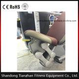 El equipo comercial de la gimnasia/el ejercicio abdominal trabaja a máquina la extensión posterior Tz-9006