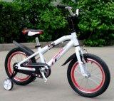 Bâti de vélo de montagne fait d'alliage d'aluminium