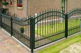 ゲートが付いている黒く強い庭の鉄の塀