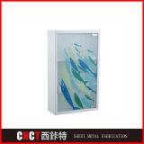 Governo di medicina fissato al muro moderno dello specchio della stanza da bagno dell'acciaio inossidabile